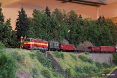 Pohled od řeky na manipulační vlak a Brejlovce 753.192 v jeho čele. Stejný pohled se naskýtal diskutujícím v jediném možném volném prostoru celého sálu.