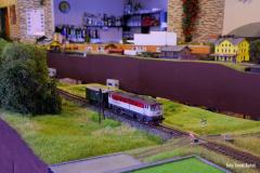 Stejný vlak jen o pár metrů blíže a jen se zátěží služebního vozu.