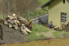 Na podzim jsem dělal dřevo a je mi jasný, že takovouhle kládu bych asi sám nezvládnul, ale ten děda si poradí. Vždyť mu to jde pěkně od ruky, když na něho babka kouká... (známe to asi všichni)