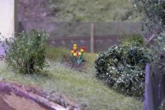 Pár keříků a kytiček u strážního domku.