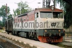 751 094-4 v Moravanech dne 24.7.1999. foto Petr Zitko
